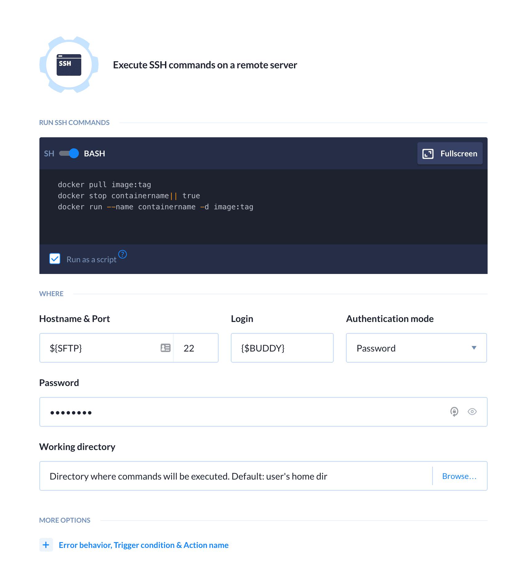 SSH action details