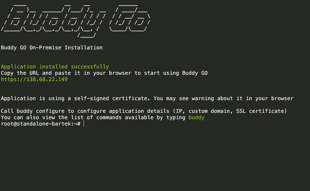 Buddy GO installation screen