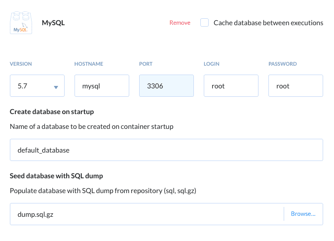 Defining the database details